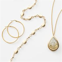 Picture for category Gilded Gold Collection